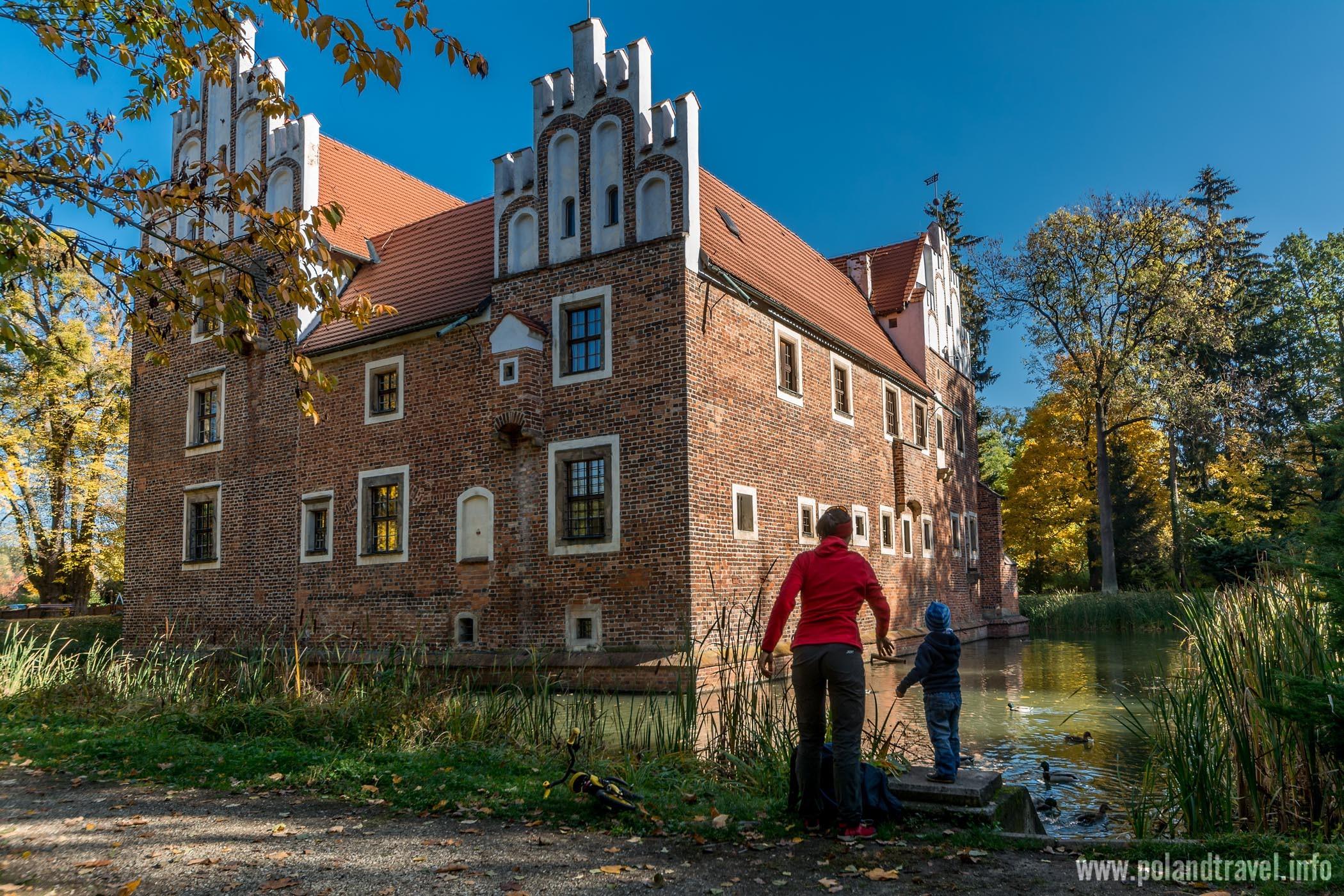 w pierwszym planie matka z dzieckiem karmiącym kaczki na stawie, z tyłu wystający z wody zamek.
